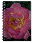 A Warm Heart Spiral Notebook