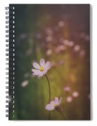 A Whisper Of Pink  Spiral Notebook