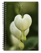 A White Heart Spiral Notebook