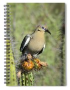A White Winged Dove  Spiral Notebook