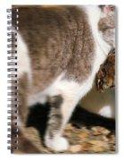 A Wild Cat Catching A Chipmunk Spiral Notebook