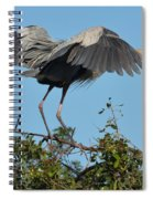 A Winged Stance Spiral Notebook