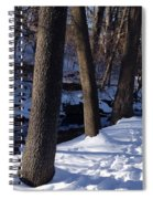 A Winter Day In New York Spiral Notebook