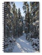 A Winter Poem.. Spiral Notebook