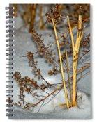 A Winter Tale  Spiral Notebook