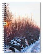 A Winter Wonderland Walk Spiral Notebook