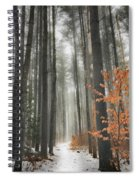 A Winters Path Spiral Notebook