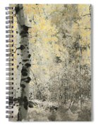 A Wisp Of Gold Spiral Notebook