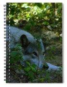 A Wolf Naps Spiral Notebook