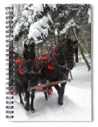 A Wonderful Day For A Sleigh Ride Spiral Notebook