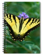 A Yellow Butterfly Spiral Notebook