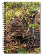 Abandoned Bench Spiral Notebook