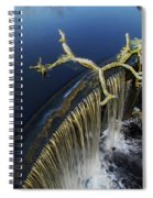 Abbott's Mill Spill Spiral Notebook