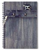 Abc's Spiral Notebook