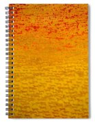 About 2500 Tigers Spiral Notebook