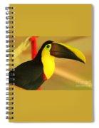 About A Beak  Spiral Notebook