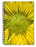 About To Be A Sunflower Spiral Notebook