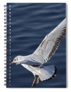 Above Level Spiral Notebook