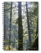 Above The Firs Spiral Notebook