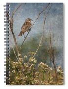 Above The Prairie Spiral Notebook