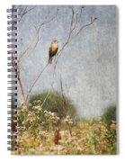 Above The Prairie II Spiral Notebook