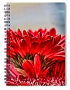 Above The Rest By Diana Sainz Spiral Notebook