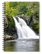 Abrams Falls Spiral Notebook