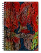 Abstract - Emotion - Annoyance Spiral Notebook
