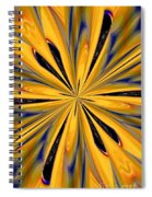 Abstract 227 Spiral Notebook