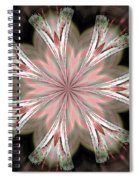 Abstract 261 Spiral Notebook