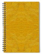 Abstract 494 Spiral Notebook