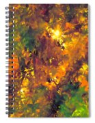 Abstract 98 Spiral Notebook