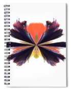 Abstract A030 Spiral Notebook