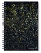 Abstract Background Of Tree At Night Spiral Notebook