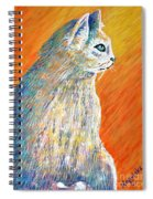 Jazzy Abstract Cat Spiral Notebook
