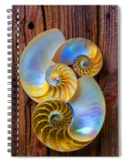 Abstract Chambered Nautilus Spiral Notebook