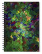 Abstract Series Ex1 Spiral Notebook