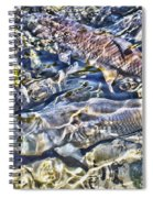Abstract Fish 3 Spiral Notebook