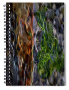 Abstract From The Sea Spiral Notebook
