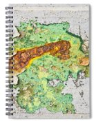 Abstract Grunge Spiral Notebook