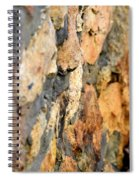 Abstract Natural Stone Spiral Notebook