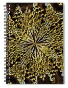 Abstract Neon Gold Spiral Notebook