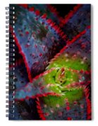 Abstract Of Bromeliad Spiral Notebook
