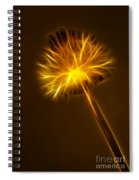 Abstract Of Nature 1 Spiral Notebook