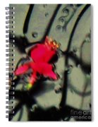 Abstract Red And Black Spiral Notebook