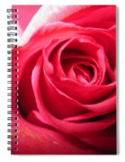 Abstract Rose 4 Spiral Notebook