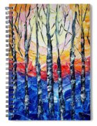 Abstract Sunset Spiral Notebook