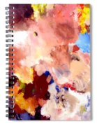 Abstract Two Spiral Notebook