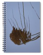 Abstract Water Reflection Spiral Notebook