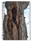 Abstract Winter Tree Spiral Notebook